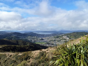 View of Wellington from Makara Peak